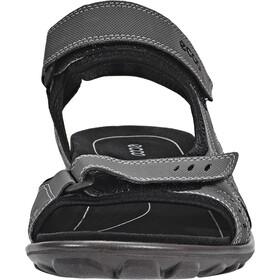 ECCO All Terrain Sandals Herren anthracite